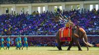 スリン象祭り
