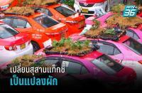 バンコクで、使われなくなったタクシーの屋根で野菜を栽培